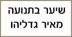מאיר גדליהו מספרת שיער בתנועה - הדמיית שיער בירושלים