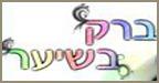 ברק נחייאסי ברק בשיער - הדמיית שיער בבאר יעקב